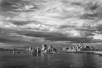USA, California, Mono Lake by Danita Delimont