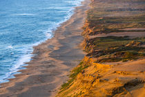 Point Reyes National Seashore by Danita Delimont