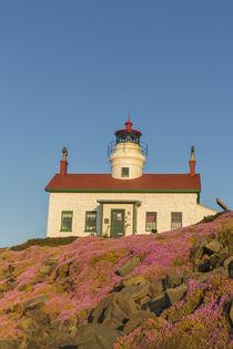 Battery Point Lighthouse in Crescent City, California, USA von Danita Delimont