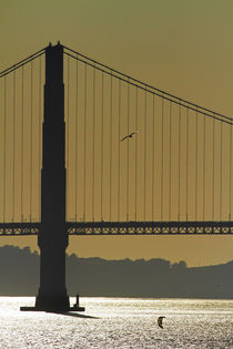 USA, California, San Francisco, Golden Gate Bridge, and afte... by Danita Delimont
