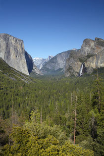 El Capitan, Yosemite Valley, Half Dome, and Bridalveil Fall,... by Danita Delimont