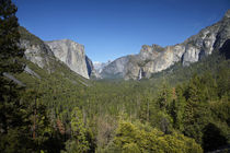 El Capitan, Yosemite Valley, Half Dome, and Bridalveil Fall,... von Danita Delimont