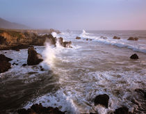 Waves crashing on the rugged Big Sur coast of California by Danita Delimont