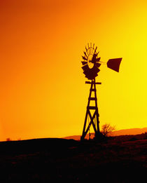 Windmill Silhouette at Sunset by Danita Delimont