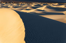 USA, California, Valley Dunes von Danita Delimont