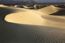USA, California, Valley Dunes by Danita Delimont