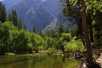 Merced River, Valley Floor, Yosemite National Park, California, USA von Danita Delimont