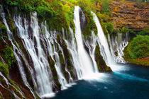 Burney Falls, McArthur-Burney Falls Memorial State Park, Cal... by Danita Delimont