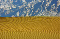 Sand Ripples and Mountains, Mesquite Flat Dunes, Death Valle... von Danita Delimont