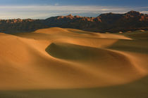 Sand ripples of the Mesquite Flat Dunes, Death Valley Nation... von Danita Delimont