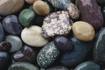 Pacific Northwest USA, Colorful river rocks von Danita Delimont