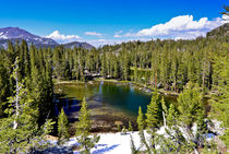 Ansel Adams Wilderness, CA, USA, Residual Snow and Blue Skie... von Danita Delimont