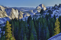 Yosemite National Park, CA, Half Dome in evening glow from O... von Danita Delimont