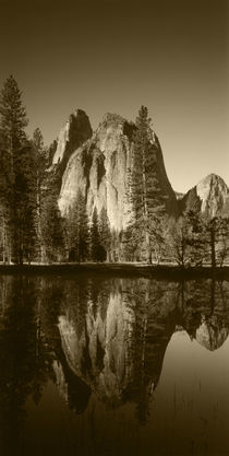 USA, California, Yosemite National Park, View of valley's sh... von Danita Delimont