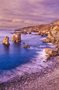 Sea stacks and rocky coastline at Soberanes Point, Garrapata... by Danita Delimont