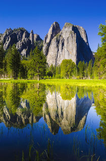 Cathedral Rocks reflected in pond, California, Usa by Danita Delimont