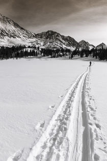 Backcountry skier, John Muir Wilderness, Sierra Nevada Mount... by Danita Delimont