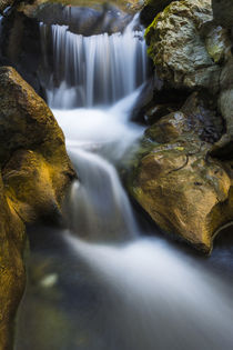 Cascade on Hare Creek, Limekiln State Park, Big Sur, California, Usa von Danita Delimont