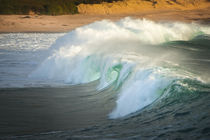 Carmel beach, California, breaking wave von Danita Delimont