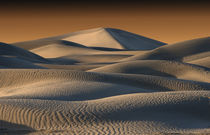 Undulating sand dunes of Death Valley in golden light by Danita Delimont