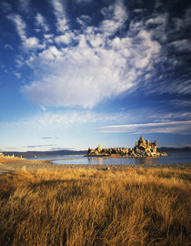 USA, California, Rock formations in Mono lake by Danita Delimont
