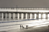 Usa, California, Avila Beach by Danita Delimont