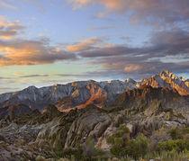Beautiful Alabama Hills with Sierra Nevada Range at sunset, ... by Danita Delimont