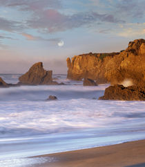 Moon over El Matador Beach, Malibu, California, USA by Danita Delimont