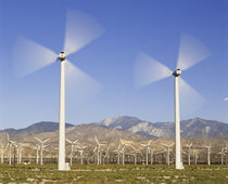 USA, California, Palm Springs, Wind energy farms along India... von Danita Delimont