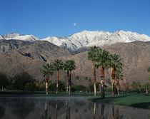 USA, California, Palm Springs, Reflection of San Jacinto Range in lake by Danita Delimont