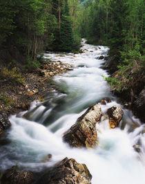 USA, Colorado, Gunnison National Forest, View of Crystal riv... von Danita Delimont