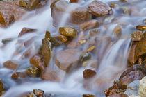USA, Colorado, Rocky Mountains, Ophir Pass von Danita Delimont