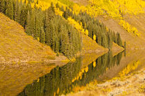 USA, Colorado, Rocky Mountains, Gunnison National Forest, Cr... by Danita Delimont