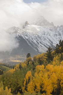 USA, Colorado, Sneffels Range von Danita Delimont