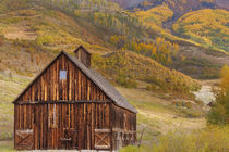 Weathered wooden barn near Telluride in the Uncompahgre Nati... von Danita Delimont
