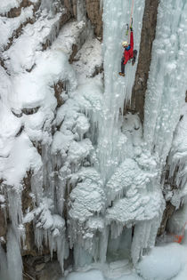 Ice climber ascending at Ouray Ice Park, Colorado by Danita Delimont