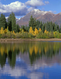 USA, Colorado, Gunnison National Forest, Mount Owens in the ... by Danita Delimont
