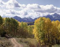 USA, Colorado, Telluride, San Miguel Mountains by Danita Delimont