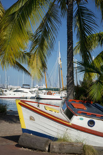 Old boat along the shore at the marina, Key West, Florida, USA von Danita Delimont