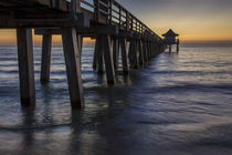 Below the pier at twilight, Naples, Florida, USA von Danita Delimont