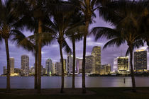 Twilight over Miami Skyline, Miami, Florida, USA by Danita Delimont