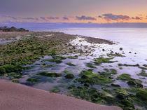 Bahia Honda Key State Park, Bahia Honda Key, Florida, USA von Danita Delimont