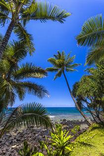Tropical coastline of Princeville, HI von Danita Delimont