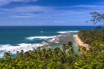 Tunnels Beach as seen from the Kalalau Trail in Kauai by Danita Delimont