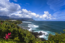 View of the northern coastline of the Hawaiian island of Kau... by Danita Delimont