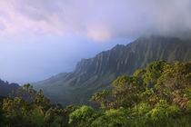USA, Hawaii, Kauai von Danita Delimont