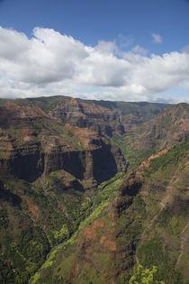 Waimea Canyon, Kauai, Hawaii by Danita Delimont