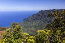 Kalalau Lookout, Kokee State Park, Kauai, Hawaii by Danita Delimont