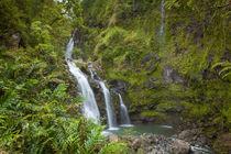 Waikani Falls, aka Three Bears, Hana Coast, Maui, Hawaii by Danita Delimont