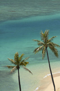 USA, Hawaii, Oahu, Honolulu, Waikiki, Fort DeRussy Beach and... by Danita Delimont